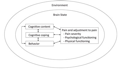Jensen (2010) pain model